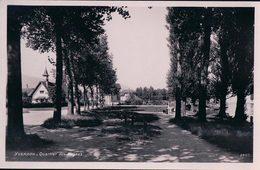 Yverdon, Quartier Des Cygnes (2480) - VD Vaud