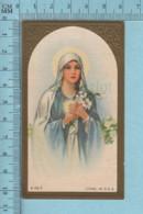 USA 106 - Gold Print, Gaufrée, Marie Tenant Un Lys - Holy Card, Image Pieuse Sainte, Santini - Devotion Images