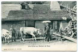 LA SUISSE : UNE FERME AUX ROCHERS DE NAYE - VD Vaud
