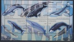 MICRONESIE 2001  BLOC  MAMMIFERES MARINS  YVERT  N°973/78 NEUF MNH** - Baleines