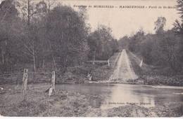 MACQUENOISE                          Foret De St Michel - Momignies