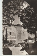 C.P.A. -  PHOTO -  VENCE - PLACE DE LA CATHÉDRALE - ANIMÉE - ÂNE ATTELÉ - VOITURE - LA PRÉVÔTÉ - C. A. P. - 833 - Vence