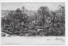 Sevilla - Jardines Del Alcazar - Dorso Sin Dividir - Sevilla