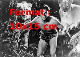 Reproduction D'une Photographie Ancienne De Buster Crabbe Tarzan Entouré De Lions En 1933 - Reproductions