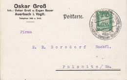 Germany Deutsches Reich OSCAR GROSS AUERBACH I. VOGTL. 1925 Card Karte PULSNITZ Sachsen Adler Eagle Stamp - Deutschland