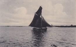 Wenduine, Wenduyne, Vissersboot (verstuurd Uit Wenduine) (pk58729) - Wenduine