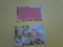 Carte L Occitane Billet Cadeau - Cartes Parfumées