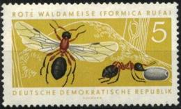 Mint Stamp  Fauna Insects Red Ant 1962  From East Germany  DDR - Insectes
