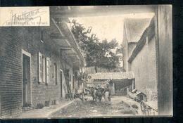 Sittard - Leijenbroek - Boerendeel - 1905 - Sittard