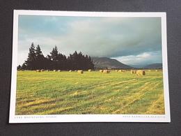 Neuseeland, Otago, Eyre Mountains (gelaufen  1999 Deutschland),  H23 - Neuseeland
