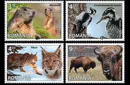 Roumanie Romania 5731/34 Faune, Lynx, Bison, Pic-vert, Marmotte - Ohne Zuordnung