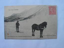 RI - CHASSEURS ALPINS - Officier Skieur Du 159e Régiment D'infanterie, Remorqué Par Un Cheval - Briancon