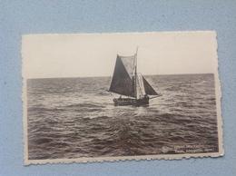 Nieuport Bains - Cartes Postales