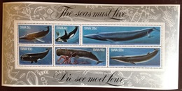 South West Africa 1980 Whales Minisheet MNH - Baleines