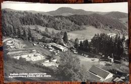 1960  Keltisch-romische Ausgrabungen Am Magdalensberg In Kärnten - Austria