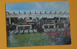 PK/CP : WESTENDE - Vakantiecentrum Zon En Zee / Centre De Vacances - 1969 - Westende