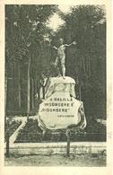 """3236 """"A BALILLA-INSORGERE E' RISORGERE (D'ANNUNZIO)""""MONUMENTO-TIMBRO OP. NAZ. BALILLA-ZARA CART. POS. ORIG. NON SPEDITA - Monumenti Ai Caduti"""