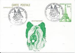Entier Cp Tour Eiffel 1984 Suippes - Enteros Postales