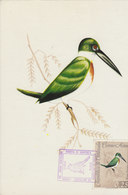 VENEZUELA 1962 Max Card Kingfisher.RARE.BARGAIN.!! - Non Classés