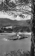 MALLORCA - CAMP DE MAR ~ AN OLD POSTCARD #93256 - Mallorca