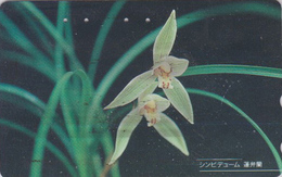 Télécarte Japon / 110-011 - Fleur - ORCHIDEE - ORCHID - CYMBIDIUM - Flower Japan Phonecard - ORQUIDEA - 2423 - Fleurs