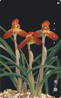 Télécarte Japon / 110-016 - Fleur - ORCHIDEE - ORCHID  - Flower Japan Phonecard - ORQUIDEA - 2425 - Fleurs
