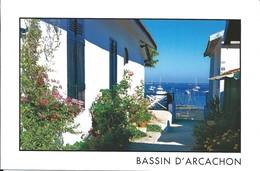 33 - BASSIN D'ARCACHON - LE CANON - Arcachon