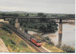 PORTUGAL-  Ribeira De Santarém - Comboio Inter-Cidades Porto/Lisboa. - Trains