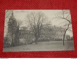 RÊVES  (Hainaut)  -  Château Des Frères De Marie - Les Bons Villers