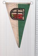 REF ENV : Fanion Flag Pennant Stendardo Touristique Ancien : SULOA Allemagne Germany - Recordatorios