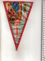 REF ENV : Fanion Flag Pennant Stendardo Touristique Ancien : Cannes - Obj. 'Souvenir De'
