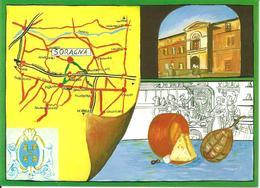 ITALIA - 1996 SORAGNA (PR) XIX Mostra Artigianato Agricoltura Commercio Su Cartolina Speciale - Vacanze & Turismo