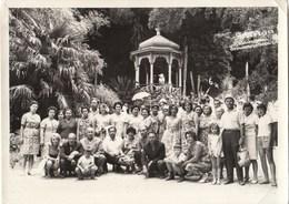 """UKRAINE. #1607  A PHOTO. """"Crimea. Yalta. Nikita Botanical Garden.*** - Proiettori Cinematografiche"""