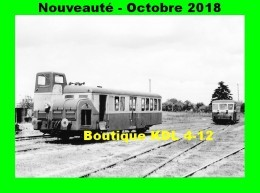 AL 544 - Autorail FNC N° X 8013 En Gare - RICHELIEU - Indre Et Loire - CFD - Frankreich