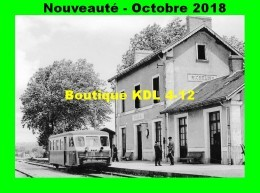 AL 545 - Autorail Billard N° 902 En Gare - RICHELIEU - Indre Et Loire - CFD - Frankreich