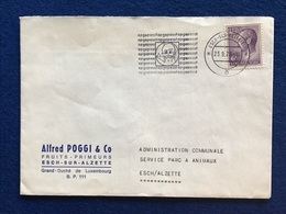 Luxembourg - Enveloppe - Alfred Poggi & Co - Fruits - Primeurs - Esch-sur-Alzette - Lettres & Documents