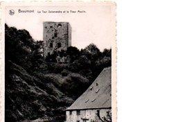 BEAUMONT. LA TOUR SALAMANDRE ET LE VIEUX MOULIN. - Beaumont