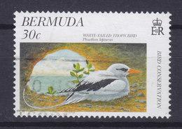Bermuda 1997 Mi. 723    30 C Bird Vogel Oiseau Weissschwanz-Tropikvogel Whitetailed Tropicbird - Bermuda