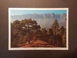 Caldera De Taburiente, La Palma (gelaufen , 2000, Deutschland) , H24 - La Palma