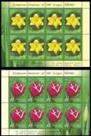 2017 Belarus - Botanical Gardens Of Minsk - Flowers - Tulips And Narcises Set Of Sheetlets - MNH** MI B 1193/1194 - Belarus