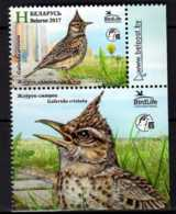 2017 Belarus -Bird Of The Year Crested Lark 1v With Label MNH ** MI 1186 - Belarus