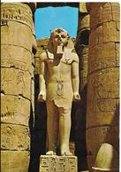 Luxor - Temple De Ramses II - Luxor