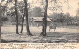 R120176 Paris. Jardin D Acclimatation Du Bois De Boulogne Chalet Des Antilopes. 1905 - Cartes Postales