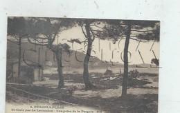 """Le Lavandou (83) : Le Retaurant """"Pergola Plage """" De Saint-Clair En 1930 PF. - Le Lavandou"""