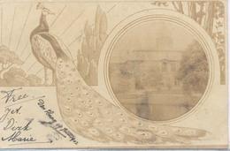 Den Haag, Type Fotokaart (2 X Scan) Lokatie Afbeelding Onbekend. (anno 1902) Zie De Scans  (Pauw) - Den Haag ('s-Gravenhage)