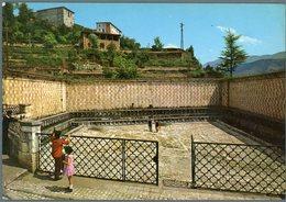 °°° Cartolina N. 575 L'aquila Fontana 99 Cannelle Nuova °°° - L'Aquila