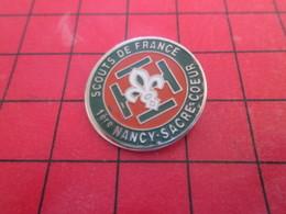 1012a PIN'S PINS / Rare Et De Belle Qualité / THEME ASSOCIATIONS : SCOUTISME SCOUTS DE FRANCE NANCY - Associazioni