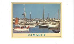 CAMARET  SUR MER VIEUX GREEMENTS DANS LE PORT ******   RARE    A   SAISIR     ****** - Camaret-sur-Mer