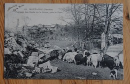 85 : Mortagne - Paysage Des Bords De La Sèvre Près Le Pont - Animée : Petite Animation - Troupeau De Moutons - (n°14956) - Mortagne Sur Sevre