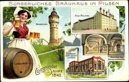 Lithographie Plzeň Pilsen Stadt, Bürgerliches Bräuhaus, Wasserturm, Neue Mälzerei, Kraftzentrale - Czech Republic